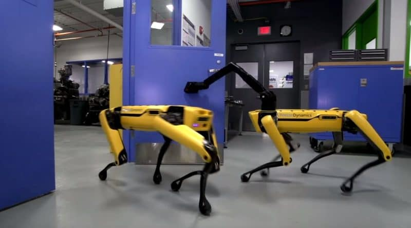 Robot quadrupedi collaborano tra loro in maniera autonoma: l'inquietante video di Boston Dynamics